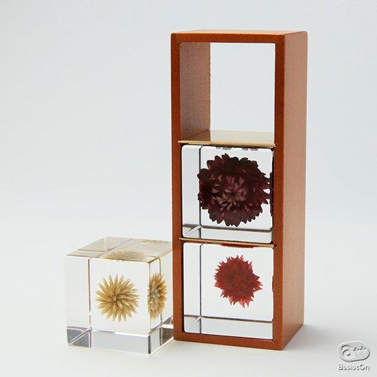 「植物のかたちの不思議」を透明なキューブに閉じ込めた「宙(そら)」 その世界をもっと楽しむための3個の木箱セット「花」「実」「種」が完成。